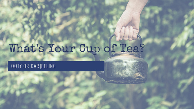OOTY OR DARJEELING: WHAT'S YOUR CUP OF TEA?
