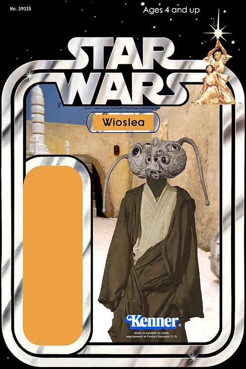 Wioslea 21a Back Star Wars Custom