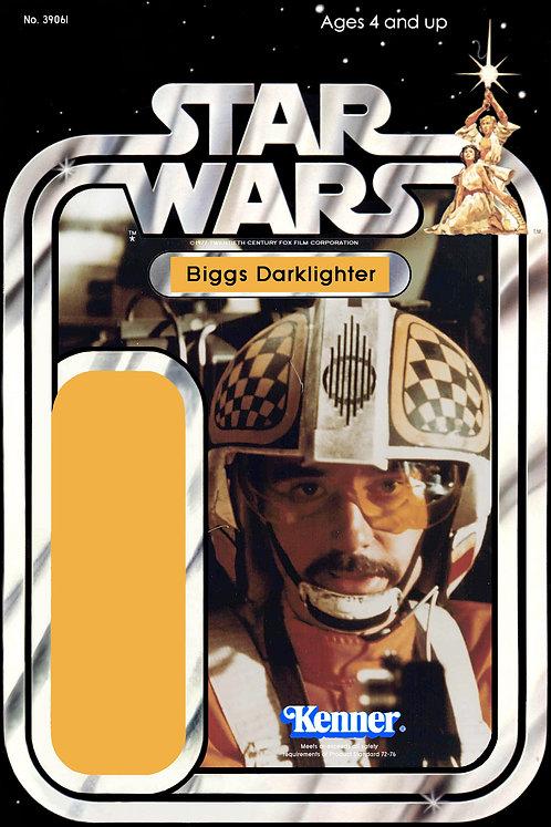 Biggs Darklighter SW 21a Kit