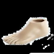 triton_prosthetic_foot_16_9_teaser_twoco