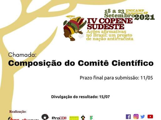 Comissão Científica do IV COPENE SUDESTE