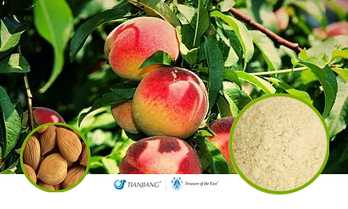 Peach Seed Pure Extract - Tao Ren - 1 kg / 2.2 lbs