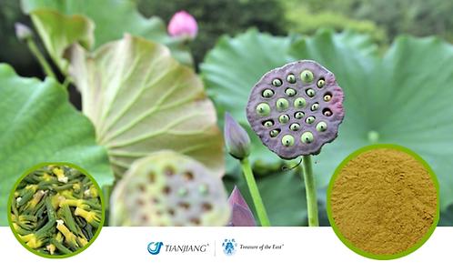 Lotus Plumule Pure Extract - Lian Zi Xin - 1 kg / 2.2 lbs