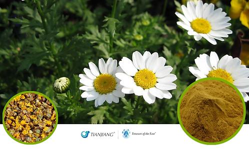 Wild Chrysanthemum Flower Pure Extract - Ye Ju Hua - 1 kg / 2.2 lbs