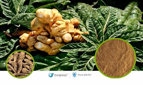 Rehmannia Root Pure Extract - Sheng Di Huang - 1 kg / 2.2 lbs