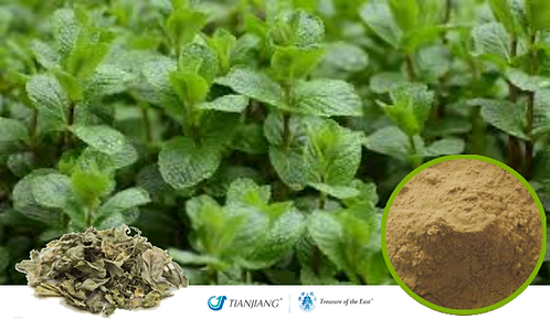 Mint Pure Extract - Bo He - 1 kg / 2.2 lbs