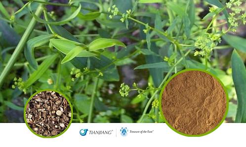 Bupleurum Pure Extract - Chai Hu - 1 kg / 2.2 lbs