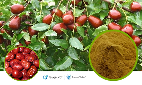 Jujube  Pure Extract - Da Zao - 1 kg / 2.2 lbs