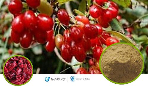 Cornus Pure Extract - Shan Zhu Yu - 1 kg / 2.2 Ibs