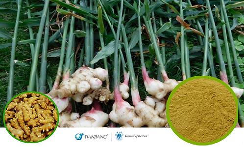 Fresh Ginger Pure Extract -Sheng Jiang / 1 kg ( 2.2 lbs)