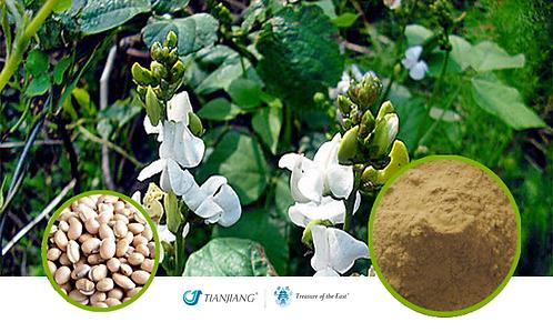 Hyacinth Bean Pure Extract - Bai Bian Dou  - 1 kg / 2.2 lbs