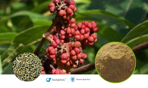 Evodia Pure Extract - Wu Zhu Yu - 1 kg / 2.2 lbs