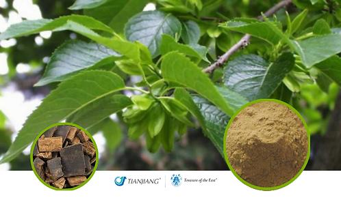 Eucommia Bark Pure Extract - Du Zhong - 1 kg / 2.2 lbs