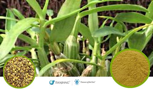 Dendrobium Pure Extract - Shi Hu - 1 kg / 2.2 lbs