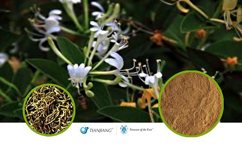 Honeysuckle Flower Pure Extract - Jin Yin Hua - 1 kg / 2.2 lbs