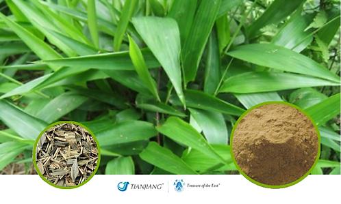Bamboo Leaf Pure Extract - Zhu Ye - 1 kg / 2.2 lbs