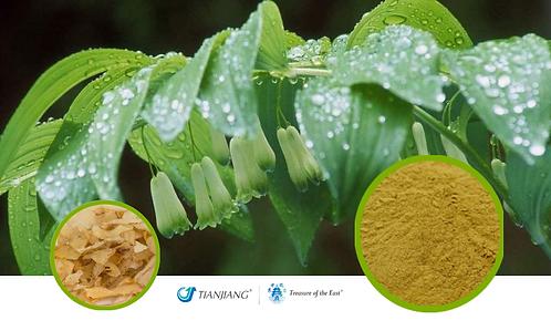 Morinda Root Pure Extract - Huang Jing - 1 kg / 2.2 lbs