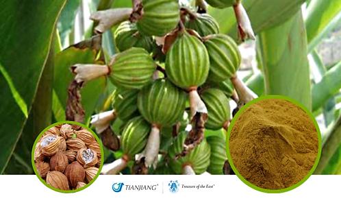 Cardamon Seed Pure Extract - Sha Ren - 1 kg / 2.2 lbs
