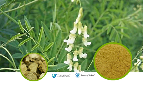 Sophora Root Pure Extract - Ku Shen - 1 kg / 2.2 lbs