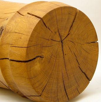 Oak grain close up
