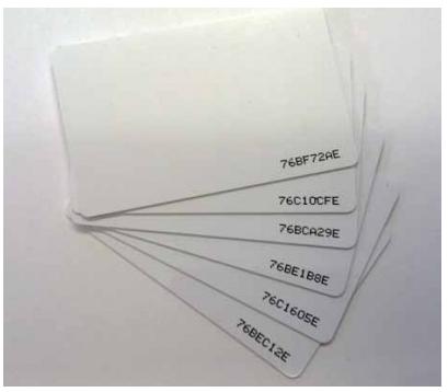 TRADE Golmar ISO proximity card