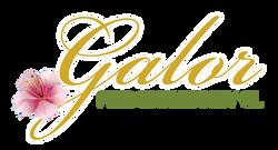 12-05_GALOR_LOGO_FLAT.png