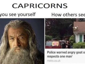 Capricorn Stereotypes