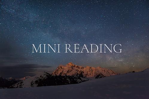 Mini Reading