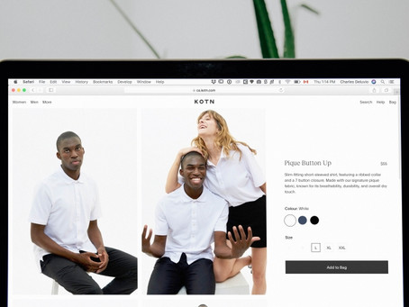 E-commerce Essentials: The User Experience