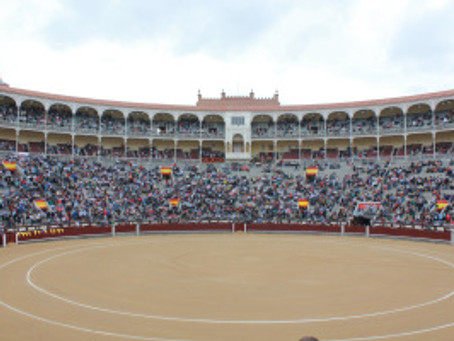 Bull Fight at Las Ventas (Places I Will Not Be Taking My Mother)