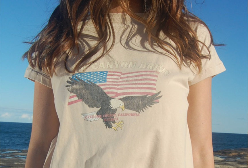 Vintage style graphic tee in sand colour  Flag and eagle on front Sand colour Easy fit Circle neckline Short sleeve