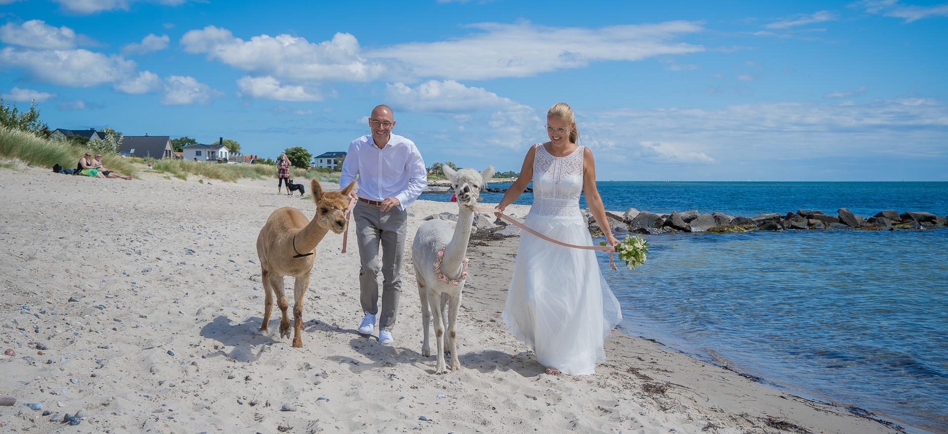 Hochzeit Denise & Ulf-411.jpg