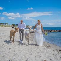 Die Hochzeit von Ulf und Denise