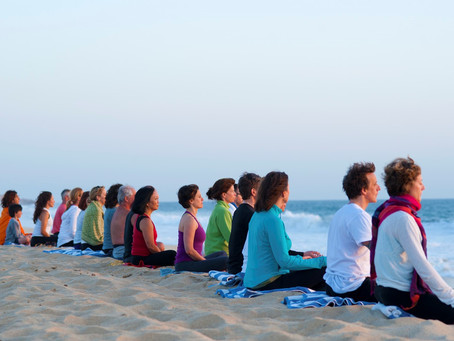 Learning to meditate …