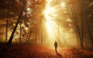 Walking Meditation as a Modern Way to a Healthier Life