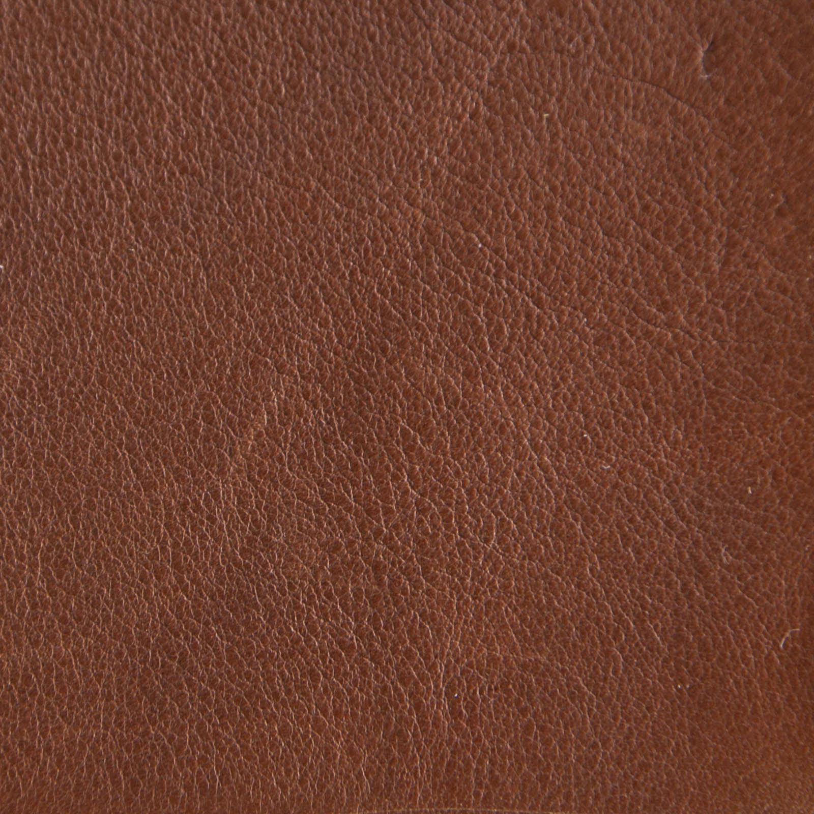 G Leather - Royal Brown