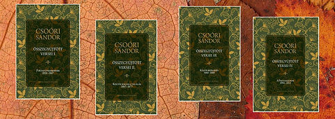 csoóri-sándor-összegyűjtött-versei-erdél