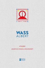 b1_wass4.jpg