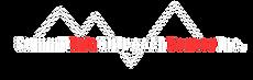 summit_logo2.png