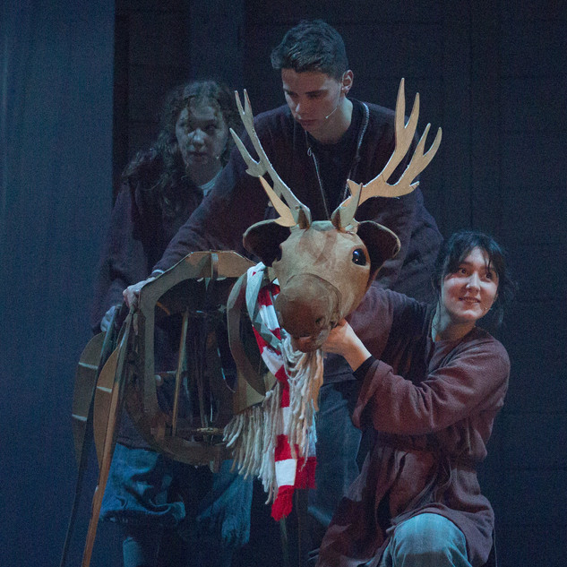 Bancu life-sized reindeer puppet, photo credit Pam Wade