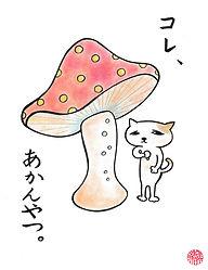 Osara Original ; not edible コレ、.jpg