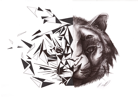 Tiger - Shatter