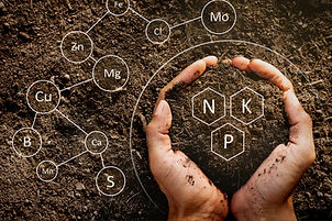hands-soil-nutrient-symbols.jpg