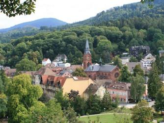 ASA/DIS Seminar in Badenweiler