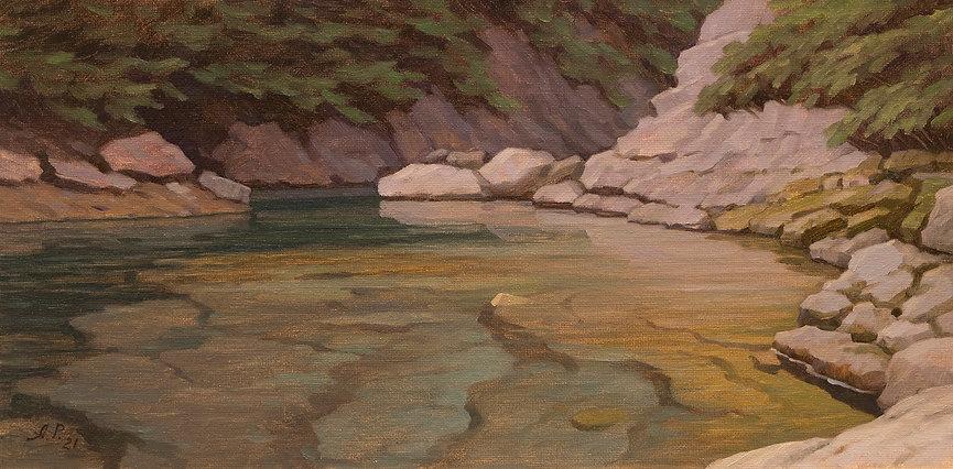Lynn Canyon Oil on Canvas Panel 8 x16.jp