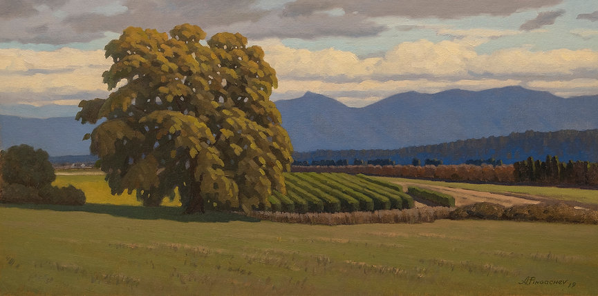 Sunny Morning Oil on Canvas Panel 12x24.