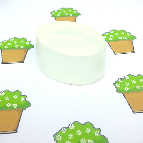 House Plant Scented Soap Bar