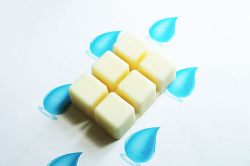 Water Scented Natural Wax Melts