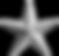purepng.com-gplatinum starstargeometrica