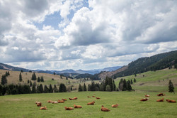 Slovakia / Travel Photography